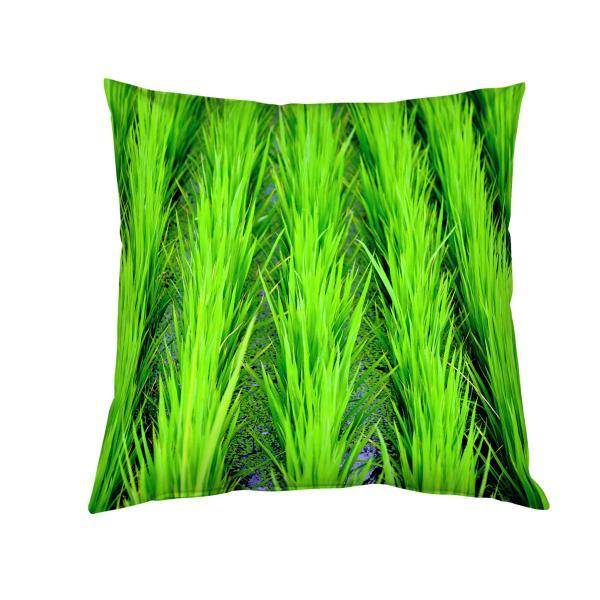 Coussin vert rizière