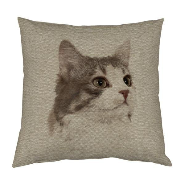 COUSSIN-CHAT-LIN