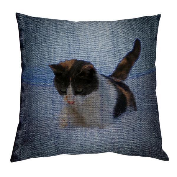Coussin-jean-personnalisation