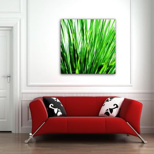 Tableau photo Herbes hautes