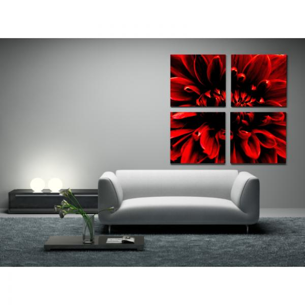 tableau photo fleur pivoine rouge decodeo. Black Bedroom Furniture Sets. Home Design Ideas