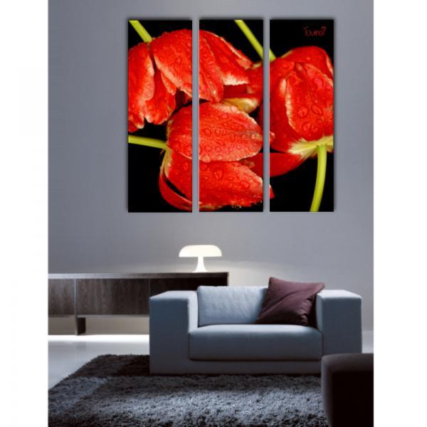 Toile triptyque les Tulipes Flammées