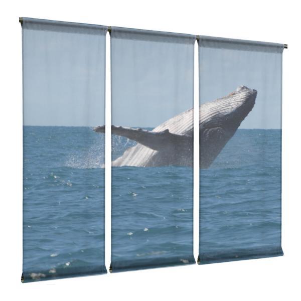 Panneau japonais voile baleine