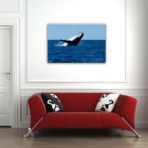 Tableau Photo de Baleine