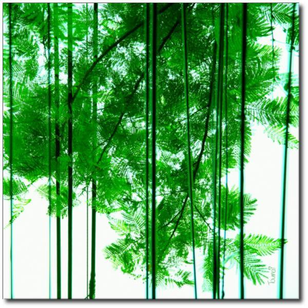 """Tableau """"Nature et lignes"""""""